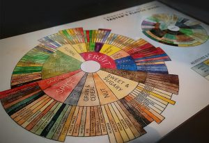 the SCAA's coffee flavour taster wheel